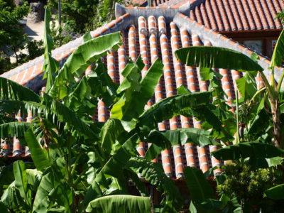 沖縄の赤瓦屋根