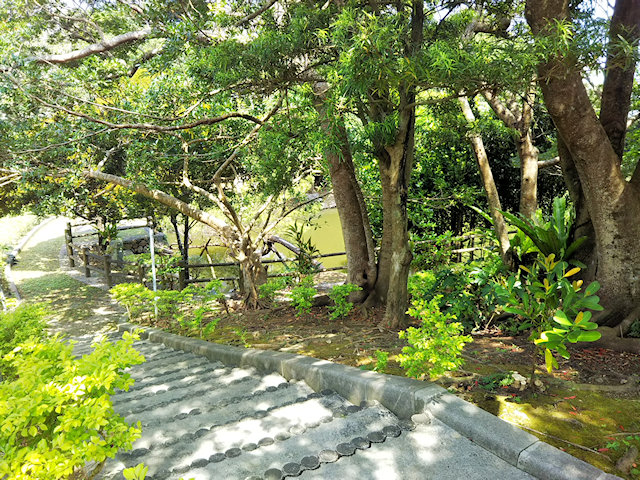 創価学会沖縄研修道場の池散策